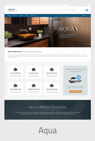 Website Development - plumber aqua - Website Development