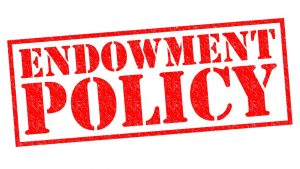 A Complete Guide To Endowment Policy 300x169 - A Complete Guide To Endowment Policy