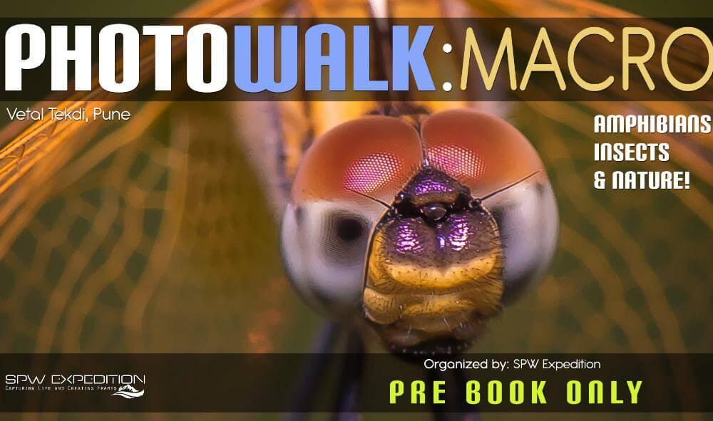 SPW Photowalk Workshop - MACRO Photography in Kothrud
