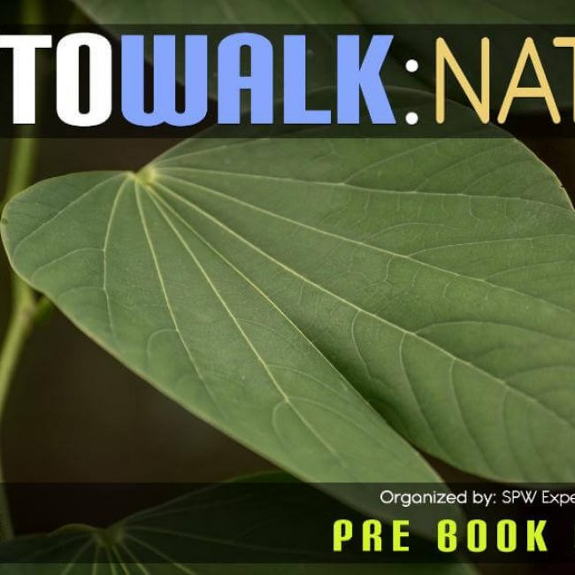 SPW Photowalk: Nature Photography – With SPW Expedition in Kothrud